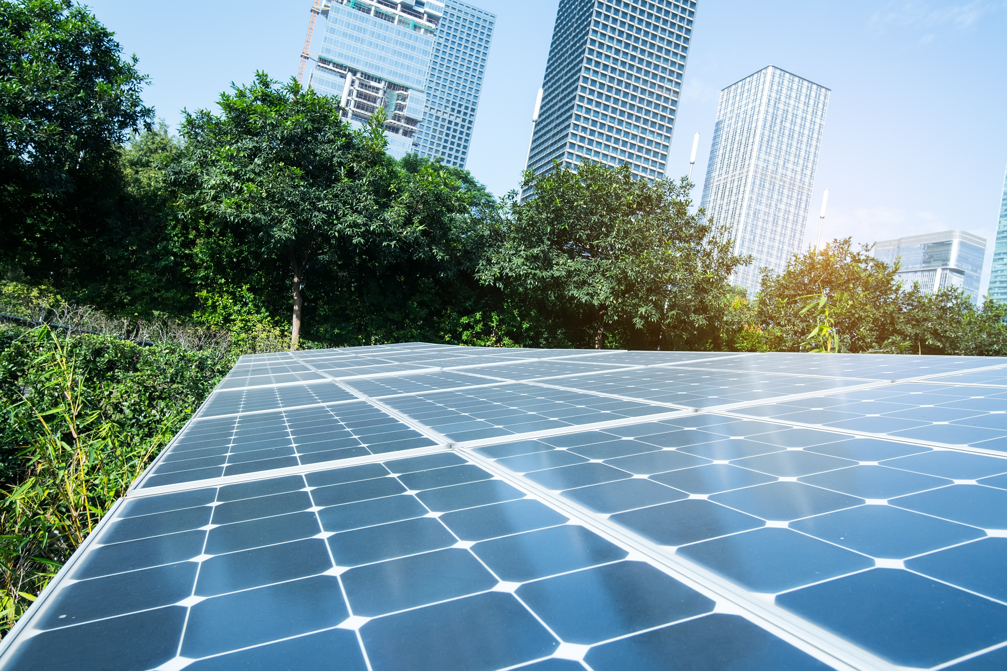 What's the pay back on solar investment for your business?