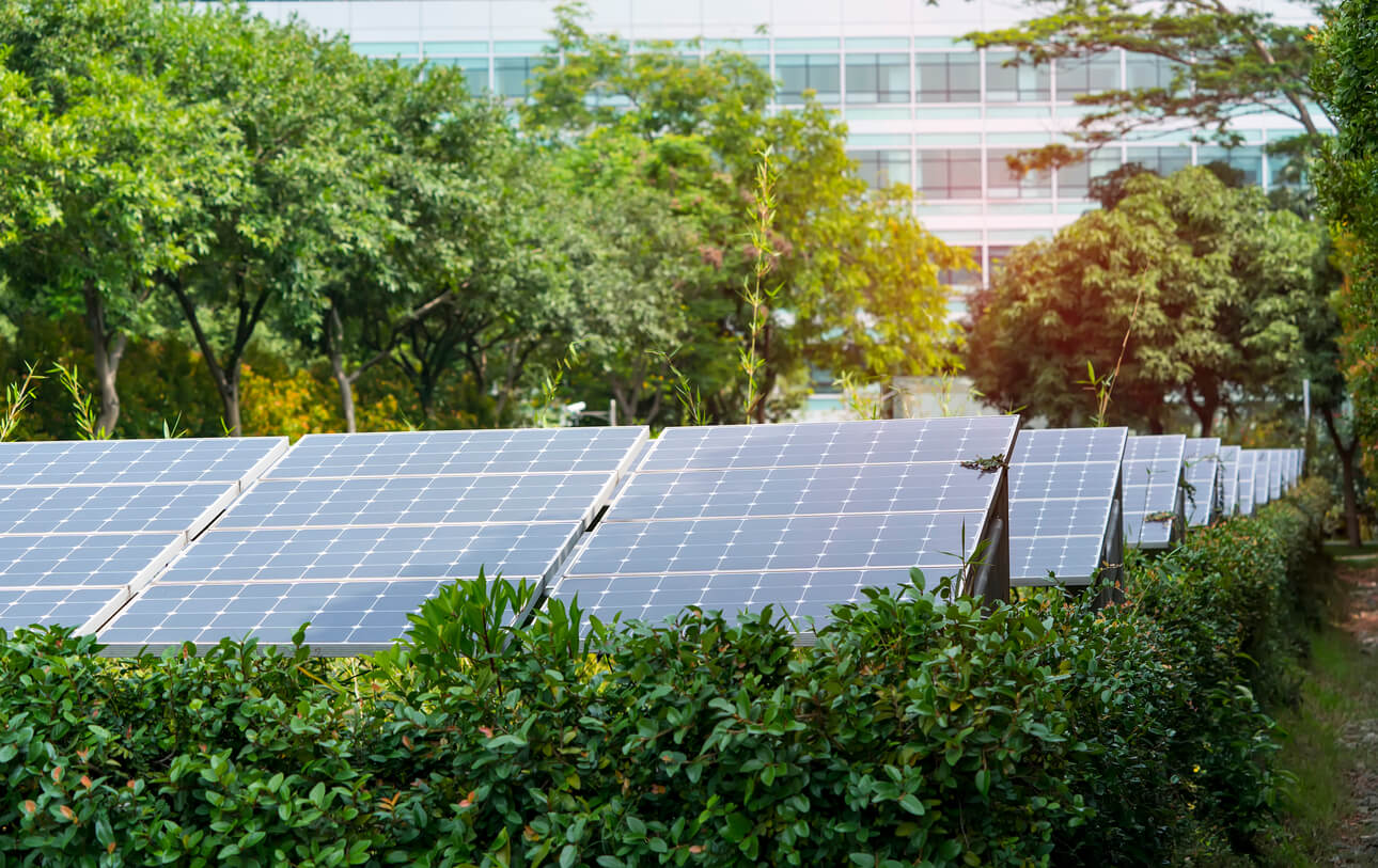 Are solar panels right for your business?